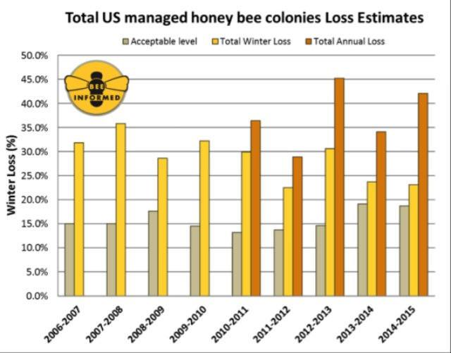 Gráfico de la desaparición de las abejas