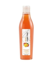 Crema de Vinagre al Mango